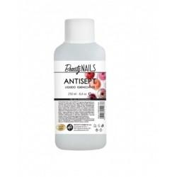 ANTISEPT LIQUIDO IGIENIZZANTE 250 ml - DFT