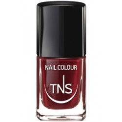 SMALTO TNS 10 ml TECNIWORK/059 AUBERGINE